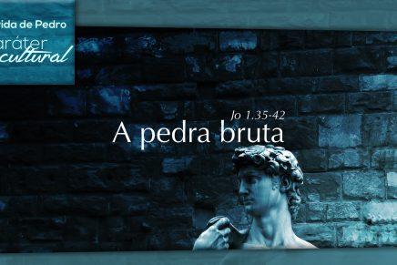 Série: A Vida de Pedro – A Pedra Bruta